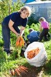 Dojrzała kobieta w ogródzie z dziećmi Obraz Stock