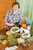 Dojrzała kobieta z leczniczymi ziele Obraz Royalty Free