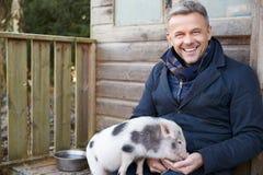 Dojrzała mężczyzna karmienia zwierzęcia domowego mikro świnia Fotografia Royalty Free