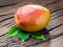 Dojrzała mangowa owoc z mango opuszcza na drewnianym tle obraz stock