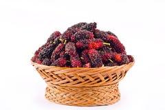 dojrzała morwa w brown koszu jest owoc z witaminami na białego tła zdrowym morwowym owocowym jedzeniu odizolowywającym Zdjęcie Stock