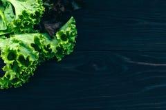 Dojrzała organicznie zielona sałatka Gotować z świeżymi warzywami Fotografia Royalty Free
