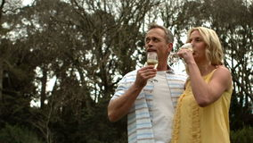 Dojrzała szczęśliwa uśmiechnięta para pije szampana zbiory