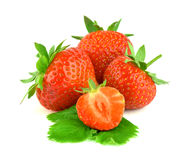 Dojrzała truskawka z liśćmi Fotografia Stock