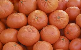 dojrzałe świeże pomarańcze zdjęcia stock