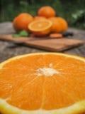 dojrzałe świeże pomarańcze Fotografia Royalty Free