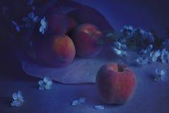 Dojrzałe brzoskwinie kłamają na stole przy nocą w blask księżyca zdjęcia royalty free