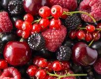 Dojrzałe czernicy, blackcurrants, wiśnie, czerwoni rodzynki i malinki, Mieszanek owoc i jagody Odgórny widok Tło jagody i fotografia royalty free