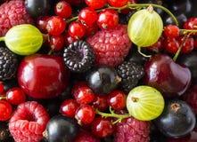 Dojrzałe czernicy, blackcurrants, wiśnie, czerwoni rodzynki, malinki i agresty, Mieszanek owoc i jagody Odgórny widok Backgrou obrazy royalty free