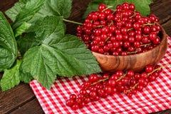 Dojrzałe czerwonego rodzynku jagody na czerwonej w kratkę pielusze Fotografia Stock