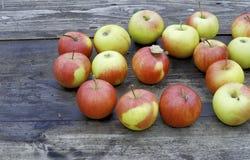 dojrzałe jabłko, Zdjęcia Stock