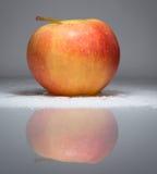 dojrzałe jabłko Fotografia Stock