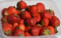 Dojrzałe jaskrawe czerwone dojrzałe truskawki w plastikowym pakunku Zdjęcia Royalty Free