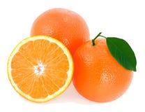 dojrzałe liść zielone pomarańcze Fotografia Stock