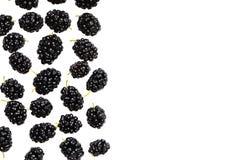 Dojrzałe morwowe jagody na białym tle Zdjęcie Royalty Free