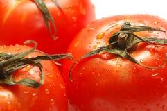 dojrzałe pomidory świeże Obraz Stock