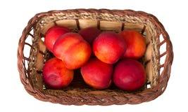 Dojrzałe słodkie brzoskwinie w łozinowym koszu, odizolowywającym na bielu Obraz Royalty Free