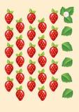 Dojrzałe soczyste czerwone truskawki z liśćmi i kwiatami wektor Zdjęcie Stock
