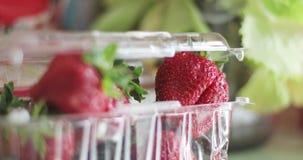 Dojrzałe soczyste truskawki w plastikowym przejrzystym pudełku zdjęcie wideo