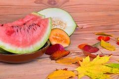Dojrzały arbuza kantalup i kolorowi jesień liście fotografia royalty free