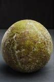 Dojrzały breadfruit czerni tło Fotografia Stock