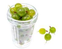 Dojrzały, cukierki zielony agrest, odizolowywający na białym tle Zdjęcia Stock