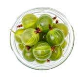 Dojrzały, cukierki zielony agrest, odizolowywający na białym tle Zdjęcie Royalty Free