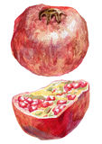 Dojrzały granatowiec i swój połówka ilustracja wektor