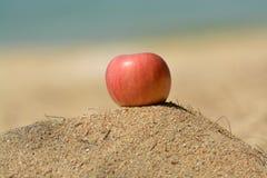 Dojrzały jabłko na gorącym piasku Zdjęcie Stock