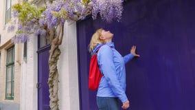 Dojrzały kobieta turysta Wącha purpura kwiatu kwitnienie Na gałąź zbiory wideo