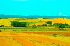 Dojrzały koloru żółtego pole obraz royalty free