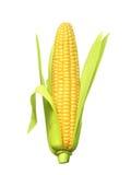 Dojrzały kukurydzany ucho royalty ilustracja
