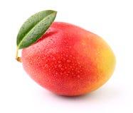 Dojrzały mango fotografia stock
