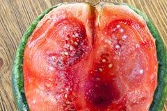 dojrzały melon obrazy stock
