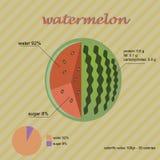 dojrzały melon Skład głownie zawiera arbuza cukier i wodę Obrazy Stock