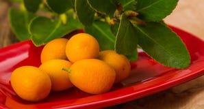 Dojrzały rżnięty kumquat na czerwonym ceramicznym talerzu Zdjęcie Stock