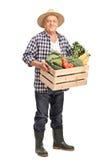 Dojrzały rolnik z skrzynką pełno warzywa fotografia stock