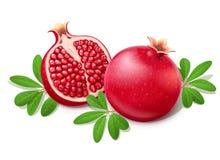 dojrzały soczysty granatowiec Owoc z zielonymi liśćmi ilustracji