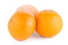 Dojrzały tangerine lub mandarynka Fotografia Stock
