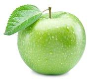Dojrzały zielony jabłko z wodą opuszcza na nim Obraz Royalty Free