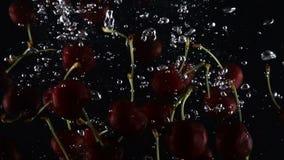 Dojrzały zmrok - czerwona słodka wiśnia spada w wodzie na czarnym tle zdjęcie wideo