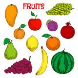 Dojrzałych i świeżych owoc nakreślenia kolorowy symbol Zdjęcia Stock