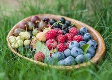 Dojrzałe jagody w drewnianym pucharze Fotografia Stock