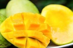 dojrzałe mango Fotografia Stock