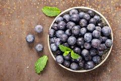 Dojrzałe organicznie jagodowe czarne jagody Obrazy Stock