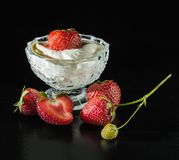 Dojrzałe truskawki w lody Fotografia Stock
