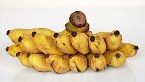 Dojrzały bananowy widok od przodu Obraz Stock