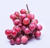 Dojrzały czerwony winogrono Obrazy Stock