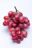Dojrzały czerwony winogrono Fotografia Royalty Free