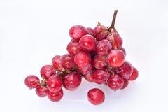 Dojrzały czerwony winogrono Obraz Stock